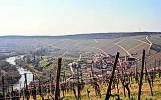 Escherndorf und Weinbau in Stellagen