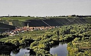 Blick nach Escherndorf und zur Vogelsburg