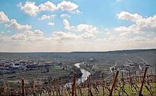 Panorama Vogelsburg