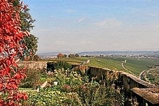 Blick von der Vogelsburg Richtung Volkach